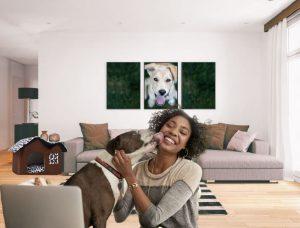 Lit tanière niche chien