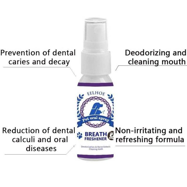 Dental hygiene for dogs and cats
