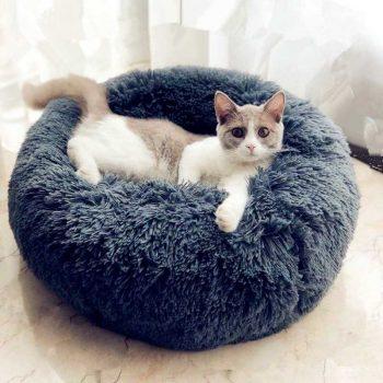 Lits pour chat
