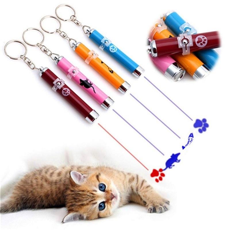 WadoSam - Pets Store