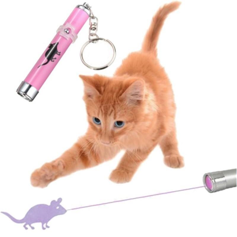 Lazer pointer for cat and kitten