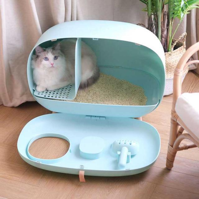 Cat litter box semi-closed